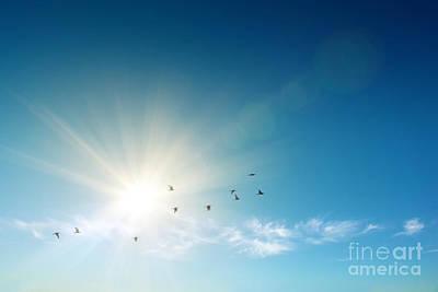 Forecast Photograph - Blue Sky by Carlos Caetano