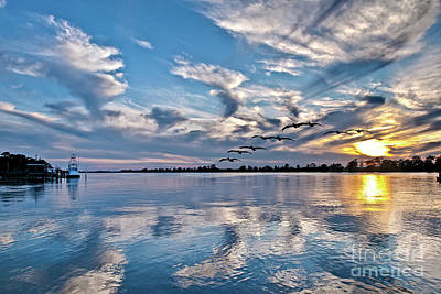 Photograph - Blue Sky Sunset by Mike Covington