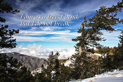 Photograph - Blue Sky Tranquil Clouds On Top Of Snow Covered Mountain Inspirational Message by Jerry Cowart
