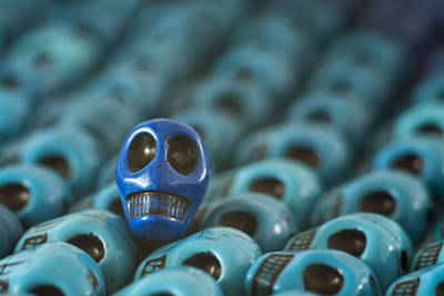 Dia De Los Muertos Photograph - Blue Smile by Mike Herdering