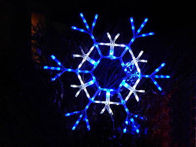 Photograph - Blue Snowflake by Wild Thing