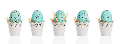 Easter Time Photograph - Blue Speckled Eggs by Amanda Elwell