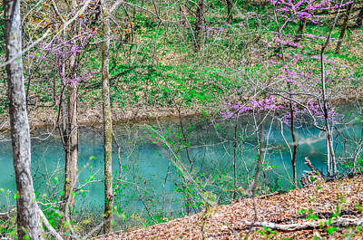 Photograph - Blue Springs Big Creek by Peggy Franz