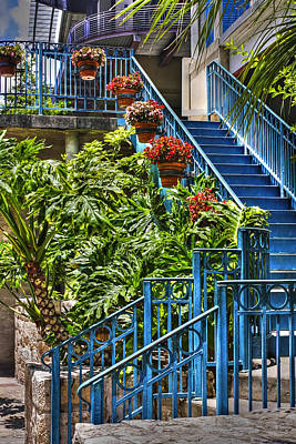 Blue Stairs And Flowers Art Print by Tony  Colvin