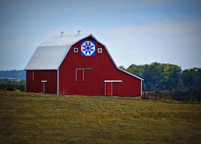 Block Quilts Photograph - Blue Star Quilt Barn by Cricket Hackmann