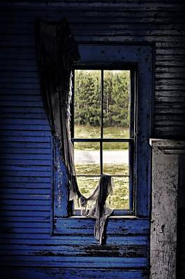 Photograph - Blue Story by Emily Stauring