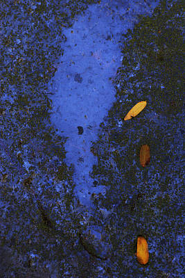 Photograph - Blue Surface 2 by Robert Woodward