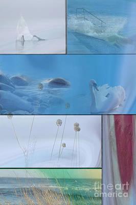 Art Print featuring the photograph Blue Swan Collage by Randi Grace Nilsberg