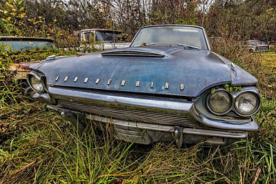 Velo Photograph - Blue Thunderbird by Debra and Dave Vanderlaan