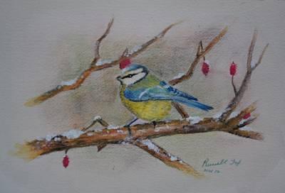 Blue Titmouse Original by Russell Fox