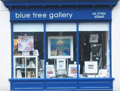 Solo Exhibition Painting - Blue Tree Gallery Window by Giuliana Lazzerini