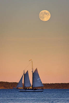 Windjammer Photograph - Blue Under A Yellow Moon by Benjamin Williamson