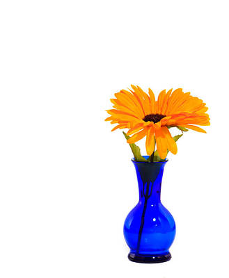 Art Print featuring the photograph Blue Vase by Cecil Fuselier