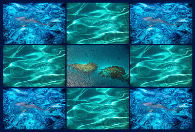 Photograph - Blue Water Discovery by Jenny Rainbow