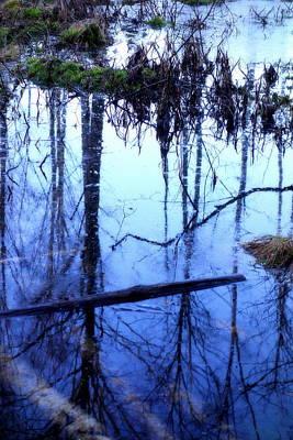 Still Blue Water Is My Mirror  Art Print by Hilde Widerberg