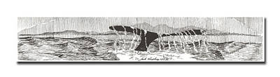 Animals Drawings - Whales Tail by Jack Pumphrey