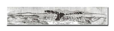 Whales Tail Art Print by Jack Pumphrey