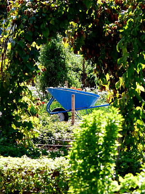 Photograph - Blue Wheelbarrow by Jeff Lowe