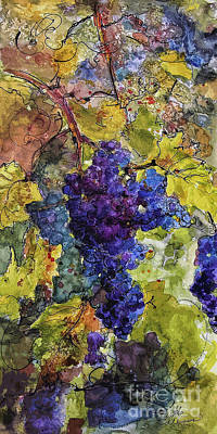 Italian Wine Painting - Blue Wine Grapes Watercolor And Ink by Ginette Callaway