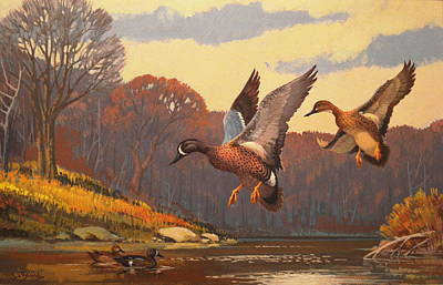Northwoods Painting - Blue-winged Teals By Lee Leblanc by Alan Kurtz