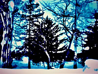 Photograph - Blue Winter Scene by Rick Todaro