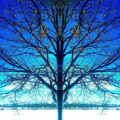 Blue Winter Tree Art Print by Marianne Dow