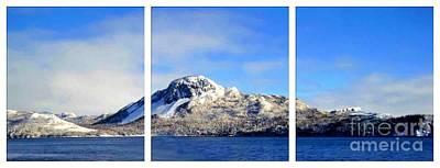 Blue Winter Triptych Art Print by Barbara Griffin