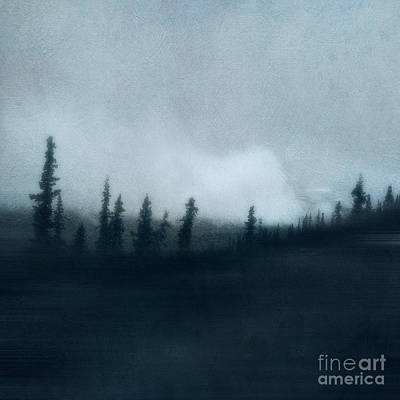 Woods Photograph - Blue Woods by Priska Wettstein