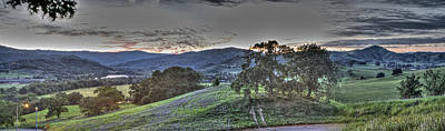 Photograph - Bluebell And Country Roads Gilroy Ca by SC Heffner
