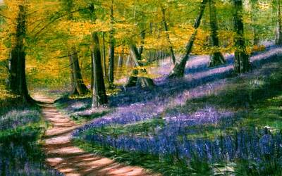 Painting - Bluebell Wood by Lynn Hughes
