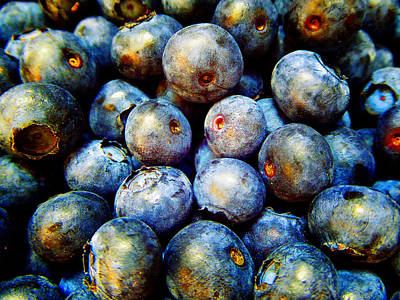 Photograph - Blueberries E by Laurie Tsemak