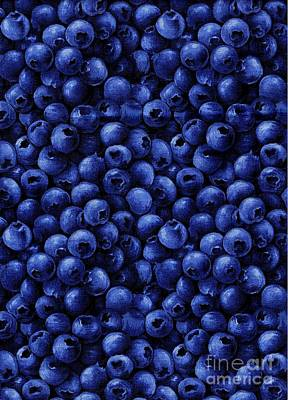 Blueberries In Fabric - Quiltmaker - Seamstress Art Print by Barbara Griffin