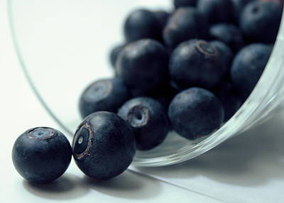 Photograph - Blueberries by Joseph Skompski