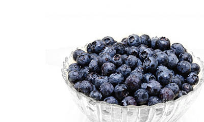 Photograph - Blueberry 3 Panorama by Andee Design