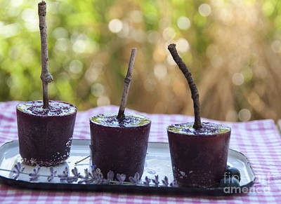 Photograph - Blueberry Ice Pops by Juli Scalzi