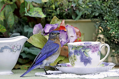 Bluebird And Tea Cups Art Print