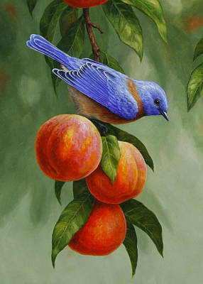 Bluebird Painting - Bluebird And Peaches Greeting Card 1 by Crista Forest