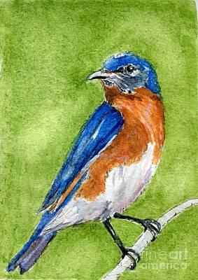 Painting - Bluebird by Andrea Rubinstein
