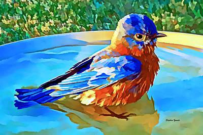 Genus Digital Art - Bluebird Bath by Stephen Younts