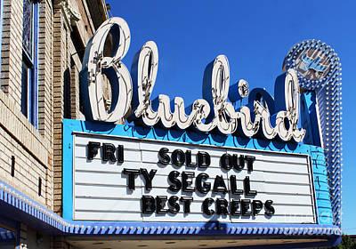 Photograph - Bluebird Marque by Steven Parker