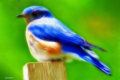 Genus Digital Art - Bluebird by Stephen Younts