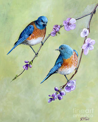 Bluebirds And Blossoms Art Print by Debbie Hart