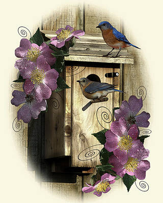 Photograph - Bluebirds And Wild Roses by TnBackroadsPhotos
