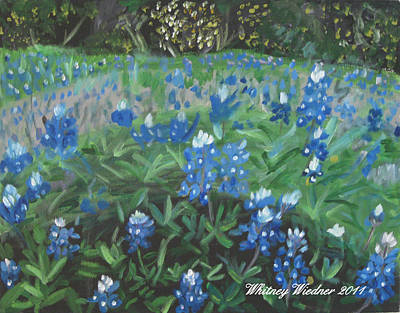 Painting - Bluebonnet Field by Whitney Wiedner
