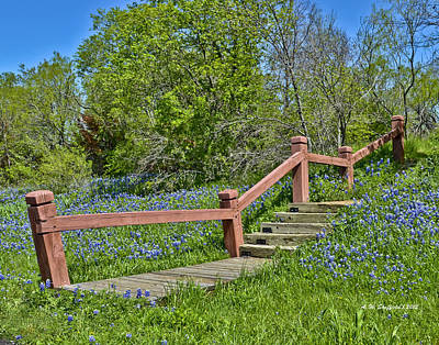 Photograph - Bluebonnets And Stairs by Allen Sheffield