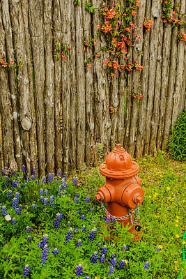 Photograph - Bluebonnets With Hydrant And Fence by Allen Sheffield