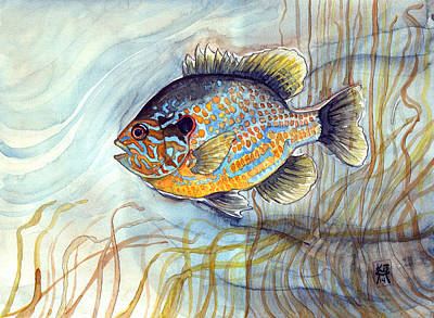 Painting - Bluegill by Katherine Miller