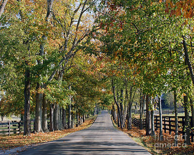 Kentucky Horse Park Painting - Bluegrass Fall by Roger Potts