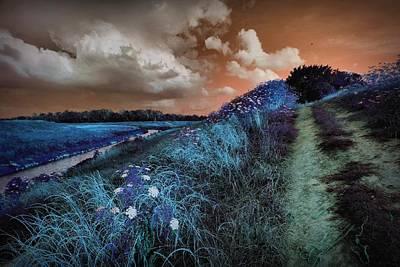 Eerie Digital Art - Bluegrass by Linda Unger