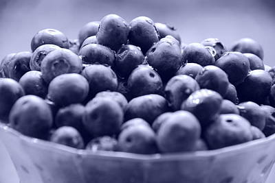 Photograph - Blueish Berries by Beverly Stapleton